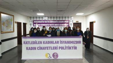 Photo of TJA ve HDP Kadın Meclisi katledilen kadınlara ilişkin açıklama yaptı
